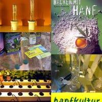2005 hanf 01