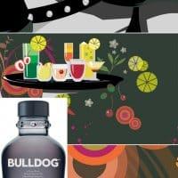 2008 bulldoggin 01