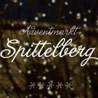 2010 adventmarkt spittelberg 01