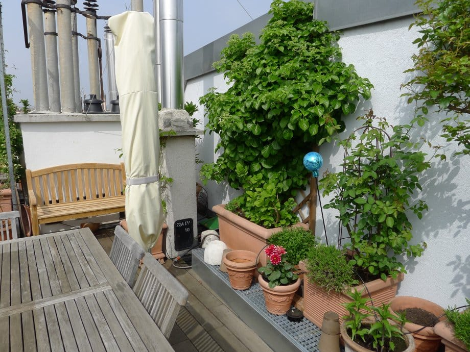 2013 05 01 terrasse 29