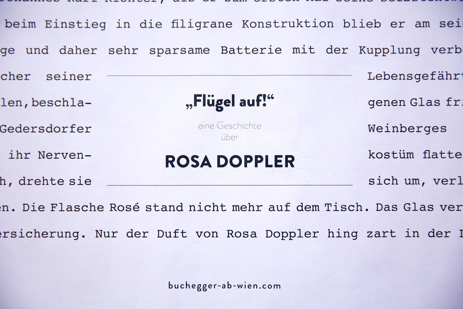 2013 buchegger rosadoppler 4
