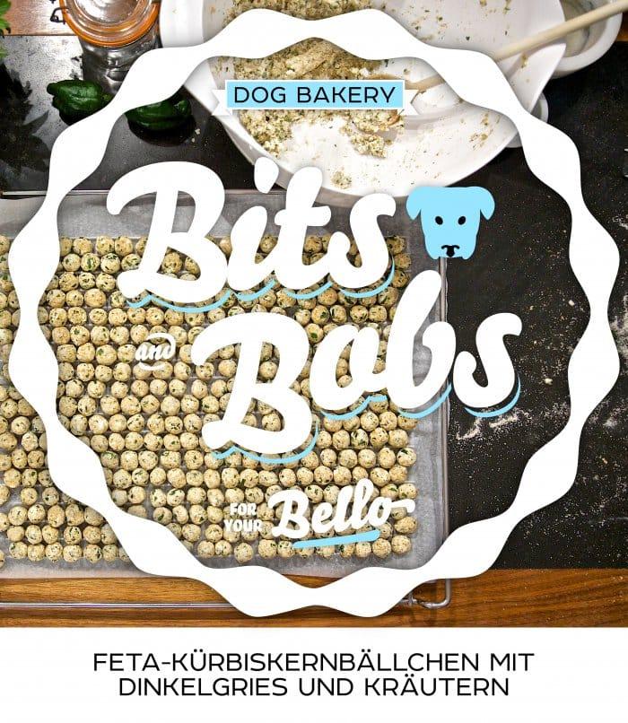 2013 dogbits 0