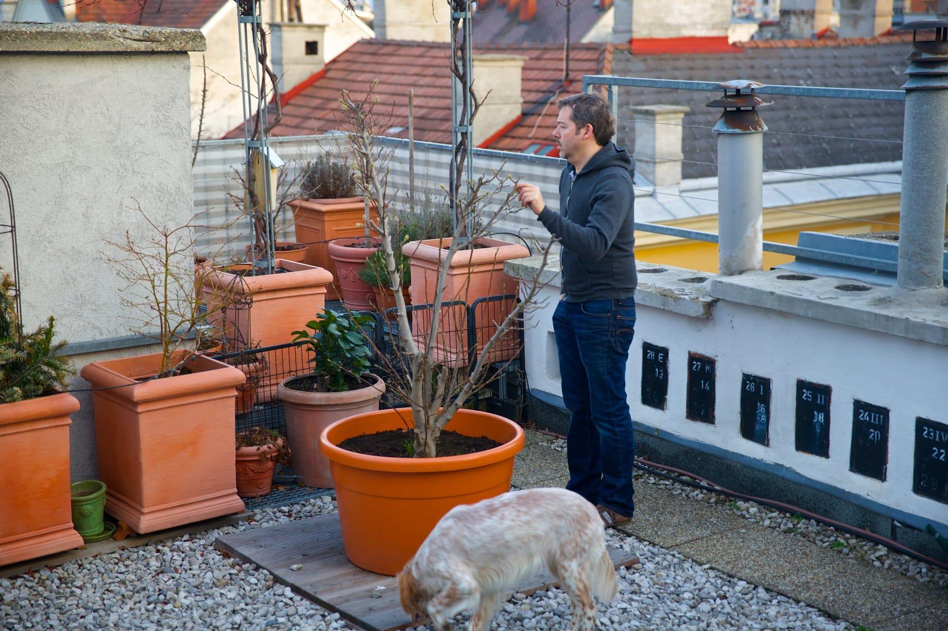 2014 terrasse entwintert 6