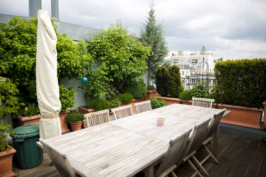 2014 terrasse blumenmeer 1