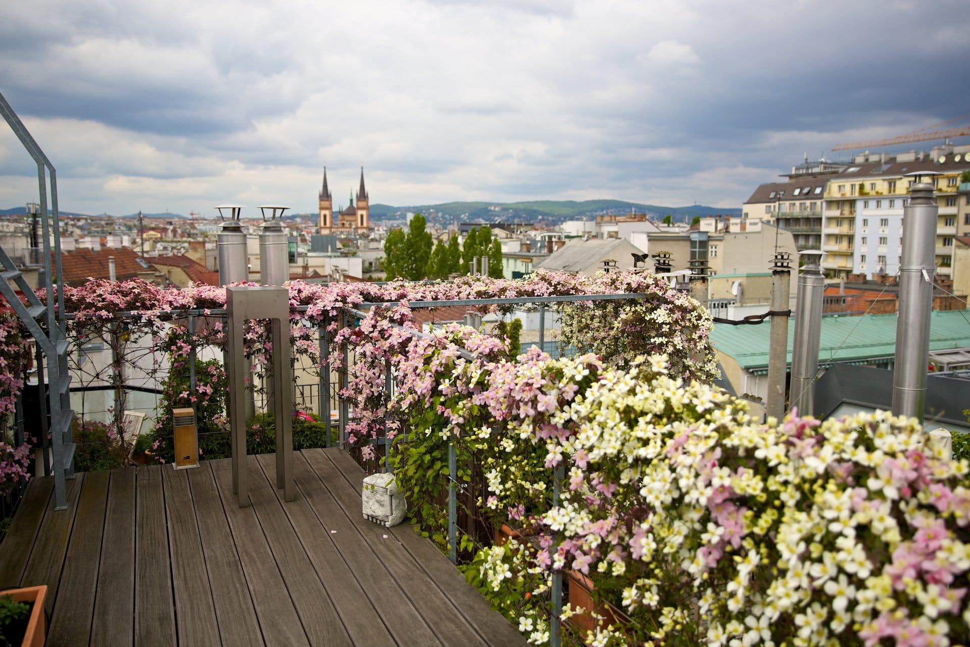 2014 terrasse blumenmeer 2