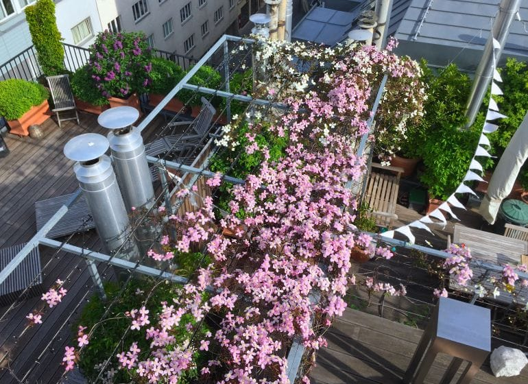 2015 05 06 flowerpower 15