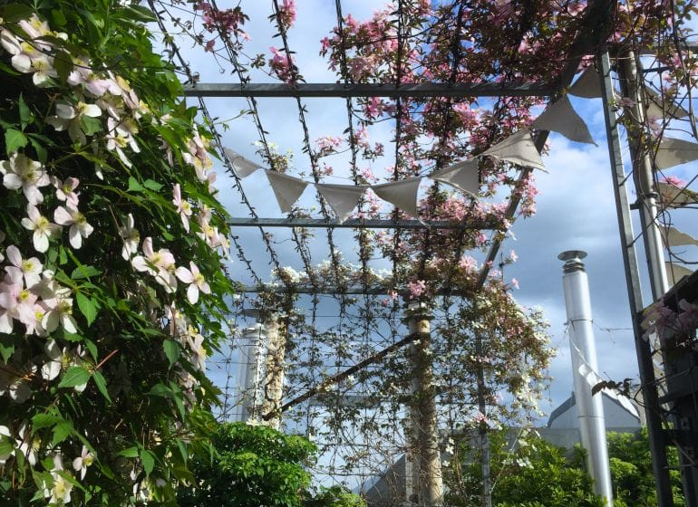 2015 05 06 flowerpower 4