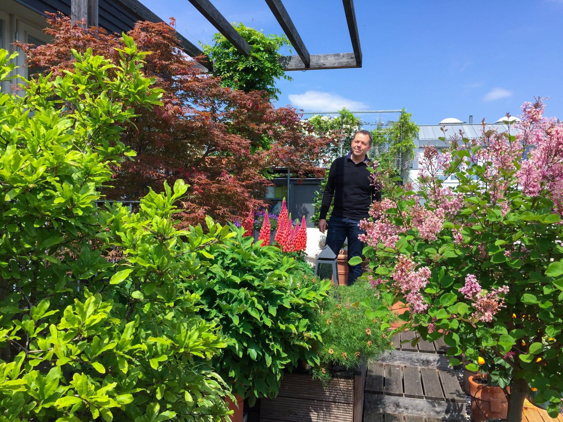 2016 05 14 terrassenpracht 4