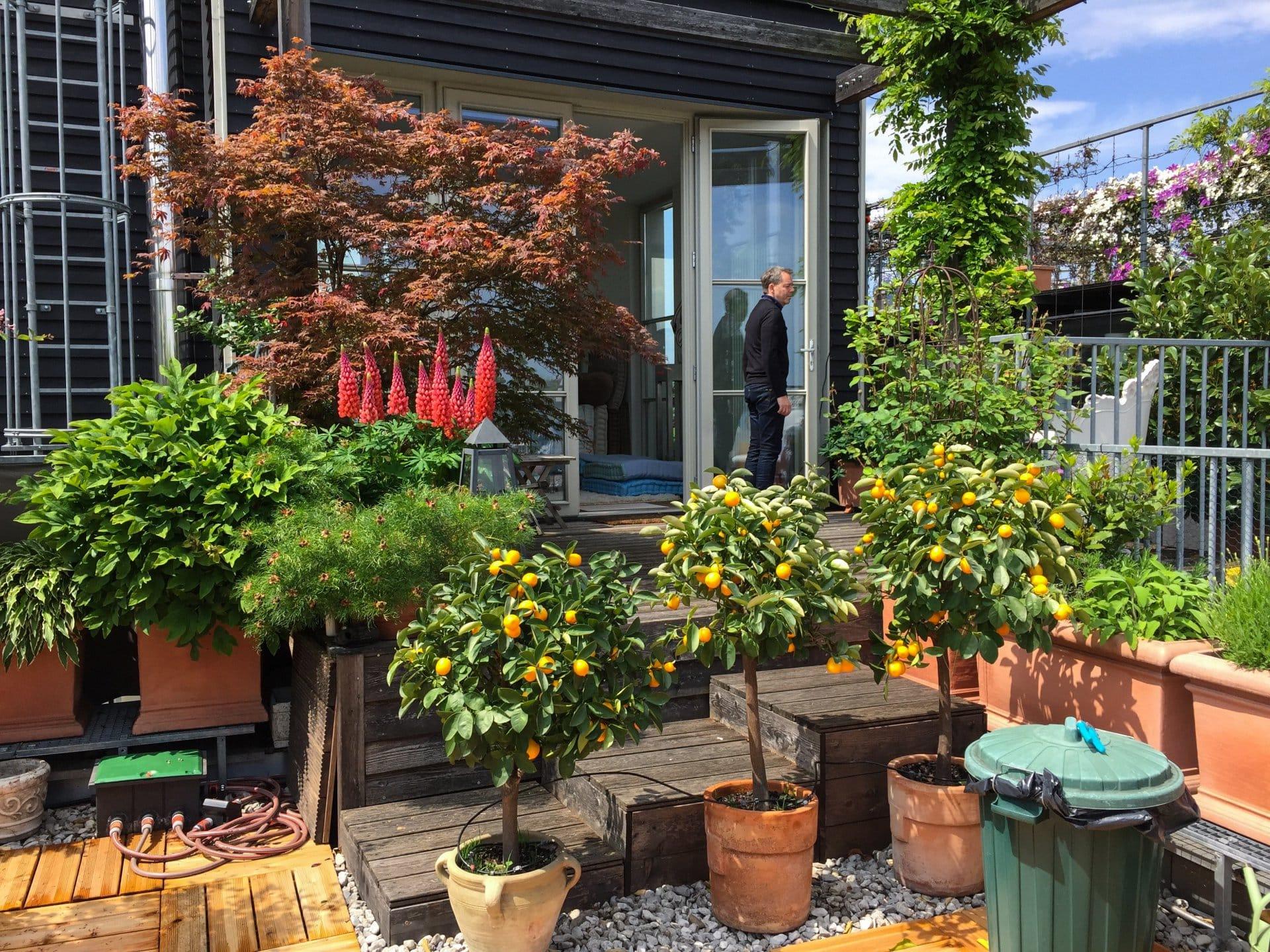 2016 05 14 terrassenpracht 5