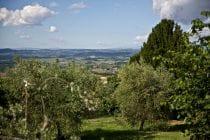 2014 05 31 tuscany 146