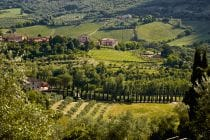 2014 05 31 tuscany 154