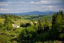 2014 05 31 tuscany 155