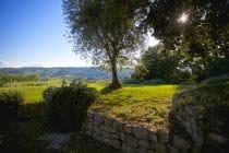 2014 05 31 tuscany 164