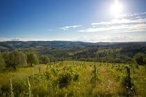 2014 05 31 tuscany 166