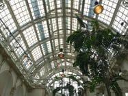 2014 09 23 palmenhaus 4