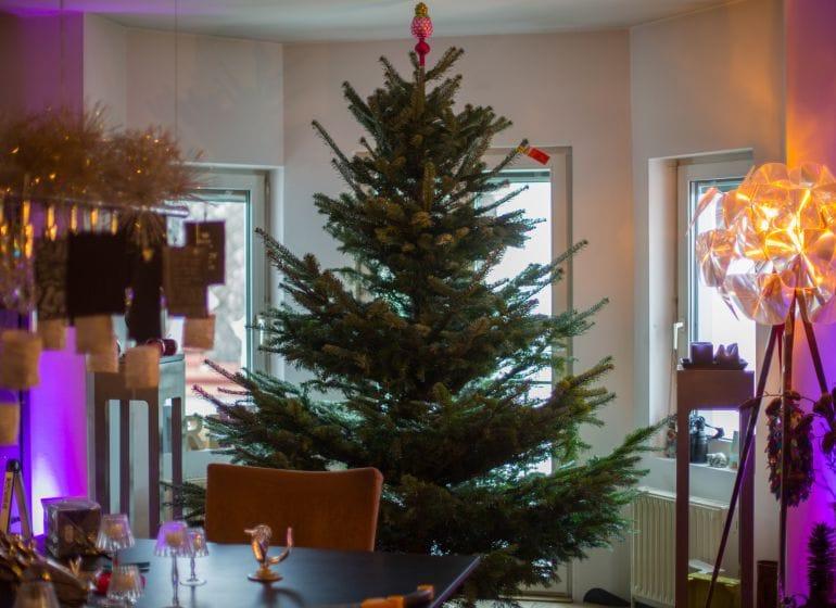 2015 12 20 weihnachtsbaum