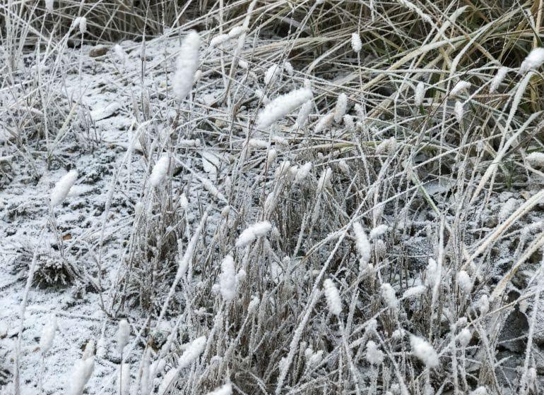 2016 12 20 schnee